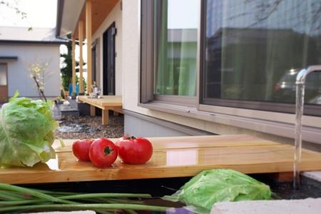 野菜洗いの水槽