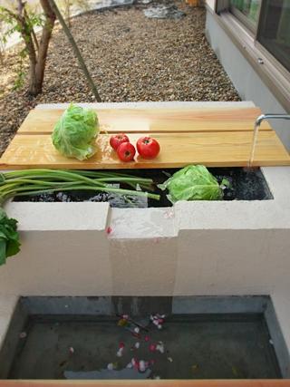 野菜洗いの水槽 こんなのあるといいよね!
