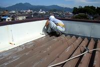 折半屋根面の清掃開始