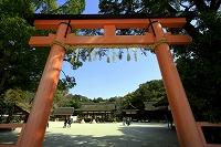 京都・上賀茂神社
