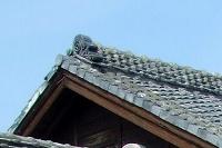 改修前の瓦屋根