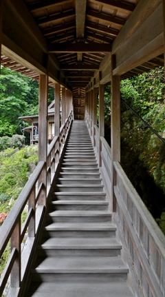 臨済寺 茶室(夢想庵)への外通路(木製外階段)